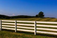 Bewirtschaften Sie in Maryland mit frisch gemaltem weißem Zaun Stockfotografie