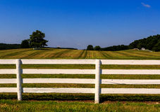Bewirtschaften Sie in Maryland mit frisch gemaltem weißem Zaun Stockbilder