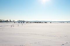 Bewirtschaften Sie mit einer Scheune und Pferden im Winter Lizenzfreie Stockfotografie