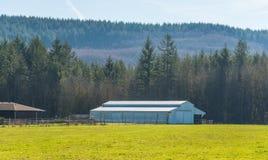 Bewirtschaften Sie mit grünem Feld in der Landschaft am Tag stockbild