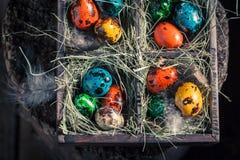 Bewirtschaften Sie Ostereier im Kasten mit Heu Lizenzfreies Stockbild