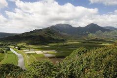 Bewirtschaftende Insel, Kauai Stockbild