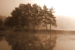 The Bewitched Lake. Lake area with small cluster of trees in heavy fog. Sepia tone royalty free stock photo