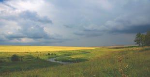 Bewolkt de zomerlandschap met rivier en tarwegebied stock afbeelding