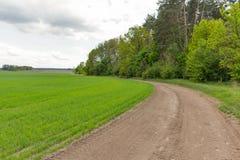 Bewolkt landschap met landweg op gebied door het hout Stock Foto