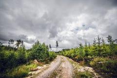 Bewolkt weer over een landweg stock afbeeldingen