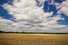 Bewolkte blauwe hemel over het gebied met geoogste korrel Royalty-vrije Stock Foto's