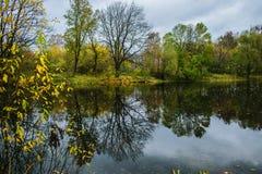 Bewolkte de herfstdag in bosmeer stock afbeelding