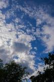 Bewolkte duidelijke blauwe hemel van aard Stock Foto's