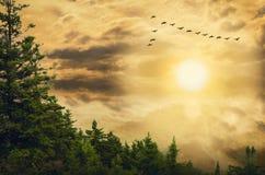 Bewolkte hemel als achtergrond Stock Foto