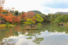 Bewolkte hemel boven bezinning van kleurrijk bos Royalty-vrije Stock Fotografie