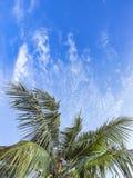 Bewolkte hemel in een zonnige dag Stock Afbeelding