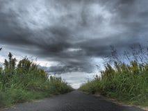 Bewolkte hemel en weg Royalty-vrije Stock Foto
