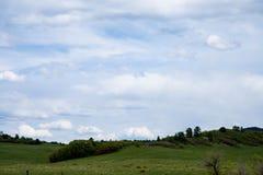Bewolkte hemel over een groen weiland met rollende heuvels en bomen Royalty-vrije Stock Foto's