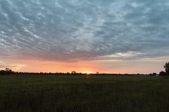 Bewolkte Kleurrijke Zonsopgang over Groen Gebied stock foto's