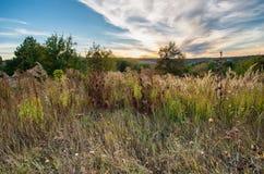 Bewolkte mooie zonsondergang over de herfstheuvel met installaties royalty-vrije stock fotografie
