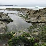 Bewolkte stranddagen Stock Fotografie
