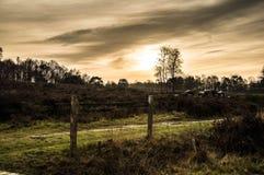 Bewolkte Zonsondergang Stock Afbeeldingen