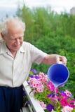 Bewässerung der Blumen Stockfotografie