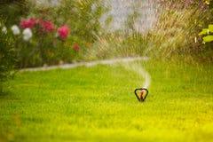 Bewässerung des lown Lizenzfreies Stockbild