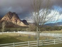 Beyond the lights  : A winter day outside of Las Vegas. January 2017-  A photo looking out behind the Spring Mountain Ranch ,once owned by billionaire Howard Stock Images