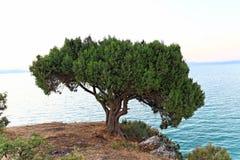 Beysehir lake Stock Photo