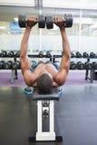 Bez koszuli mężczyzna ćwiczy z dumbbells w gym Fotografia Stock