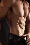 Mięśniowa męska półpostać Zdjęcie Stock