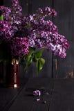 bez kwitnie na ciemnym drewnianym tle Fotografia Royalty Free