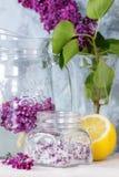 Bez kwitnie w cukierze Fotografia Stock