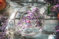 Bez kwitnie w przejrzystym szklanym teapot na b??kitnym starym drewnianym stole, zako?czenie w g?r? zdjęcia stock