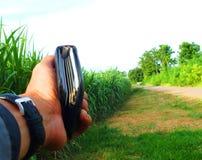 Bez zielonej trzciny, biznesy wytwarzaj? doch?d tak jak rolnicy obraz royalty free