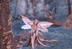 Bezaubernde Fee wachte im Wald, klatscht süß auf, nachdem sie, Stichwortmädchen mit dem blonden Haar, die Augen geschlafen hatte, stockfoto