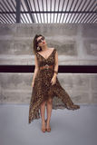 Bezaubernde Frau im Maxi Kleid der Tierdruckausstattung Stockbild