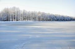 Bezaubernde Landschaft des verschneiten Winters Stockbilder