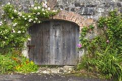 Bezaubernde Rose bedeckte Wand und stabile Türen stockfotografie