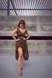 Bezaubernde sexy Frau im Maxi Kleid der Tierdruckausstattung Stockbilder