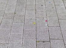 Bezbarwny, blokowy brukujący pavemnt, miastowego położenia tło obraz royalty free