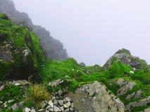 Bezdenność w mgle Obraz Royalty Free