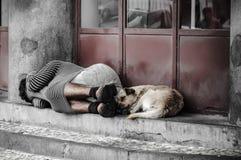 bezdomny obraz stock