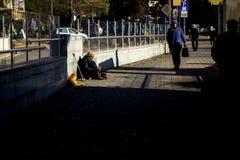 Bezdomny nieważny pyta dla pieniądze na ulicie i jego kot robi firmy w Burgas/Bulgaria/12 06 2018/ obraz stock