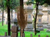 Bezem buiten het Pagodebos in Shaolin-Tempel Royalty-vrije Stock Foto