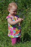 Bezette baby Stock Afbeelding