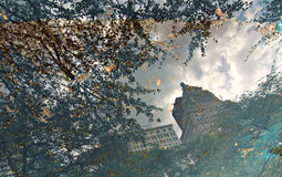 Bezinning in Chicago, Illinois, de V.S. Stock Afbeelding