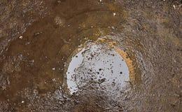Bezinning in een pool van water Stock Foto's