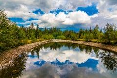 Bezinning in het meer Stock Fotografie