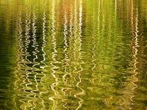 Bezinning in het water Stock Afbeelding