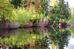 Bezinning over het water stock foto's