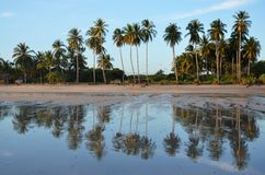Bezinning, Playa Gr Espino, El Salvador Stock Fotografie