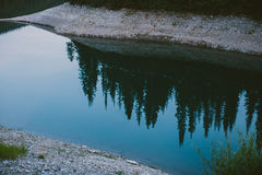 Bezinning van bomen in rivier Royalty-vrije Stock Afbeelding